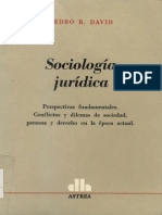 David, Pedro R. - Sociologia Juridica