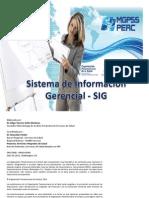 Sistema de Informacion Gerencial2