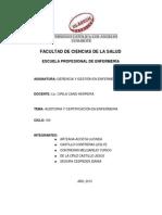 11_auditoria y Certificaciãƒæ'_n en Enfermeria_ Grupo e