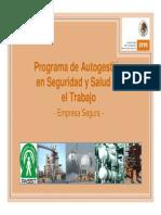 Stps-promocion Del Programa Autogestion