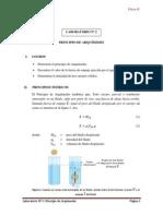 EXP Nº 2 - Principio de Arquímedes