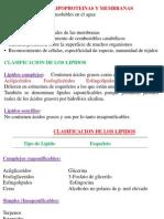 Clase de Lipido (1)