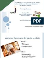 universidadmichoacanadesannicolsdehidalgo-121115063120-phpapp02
