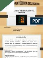 Toxicidad de Una Floricola- Jhonathan Pichogagon, Patricia Valencia- Ing.industrial