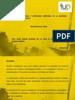 Protocolo de Tesis Pc y Lc