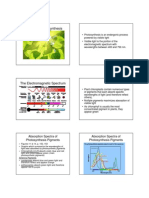 11 Photosynthesis Notes