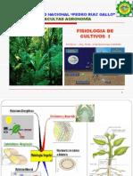 Fisiologia Cultivos - La Celula