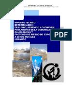 INS MINSA Informe final contaminación raura 2006