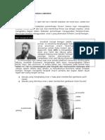 Radiologi Normal.doc