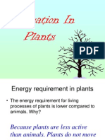 Respiration in Plant