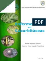 Enfermedades en Curcubitaceas
