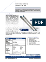 Flyer_Multi-Cycle_Shut-in_Tool (2).pdf