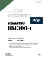 HM 300