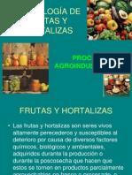 tecnologadefrutasyhortalizas-121118135637-phpapp01