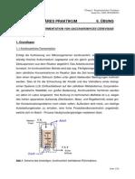 06 Skript Kontinuierliche Fermentation_WS2008_Nov