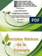 Ecologia y Principios Basicos