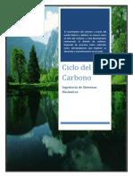 Investigacion 2 Ciclo de Carbono