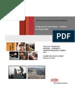 Informe+Cerro+de+Pasco+Fase+I.pdf
