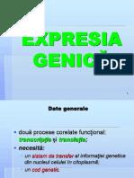 Expresie Genica