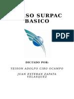 Manual Surpac Basico