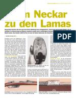 Mauser_1.pdf