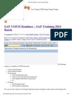 SAP VOFM Routines – SAP Training 2011 Batch
