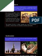 Recursos Biology Ecosis