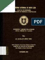 1080111081.pdf