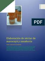 Elaboración de Néctar de Maracuyá y Zanahoria