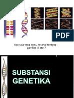 Gen, DNA & Kromosom