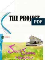 south spring project profile for client