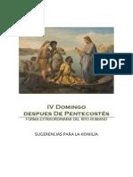 IV Domingo Post Pentecostés- Sugerencias para la Homilía