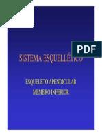 Sistema Esq. Membro Inferior