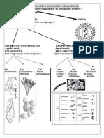 Classification Des Micro