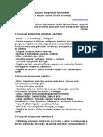 AURICULO-Funções Dos Pontos Auriculares.