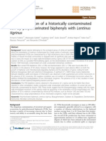 Bioaugmentacion