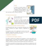 Manual Extension Estuarios Para El Personal