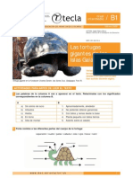 Las tortugas gigantes de islas Galapogos