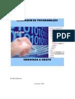 Linguagem de Programacao 1 Capitulo 2 Ano Informatica