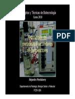 Mentaberry 5 Metabol. 2arios en Biorreactores