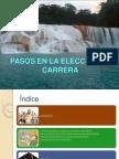 pasosenlaelecciondecarrera-121115091429-phpapp01