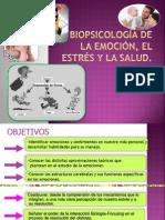 Biopsicología Del Estrés 2