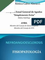 Nefroangioesclerosis.pptx
