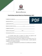Pauta Evaluación Práctica Profesional 2013