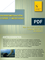 Biorremediacion UPN 2014