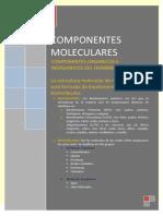 Componente Molecular