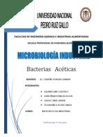 Bacterias Aceticas .Pptx