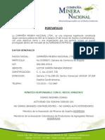 Portafolio Compania Minera 2010