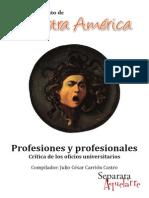Profesiones y profesionales. Crítica de los oficios universitarios