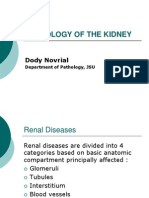 Pathology of the Kidney